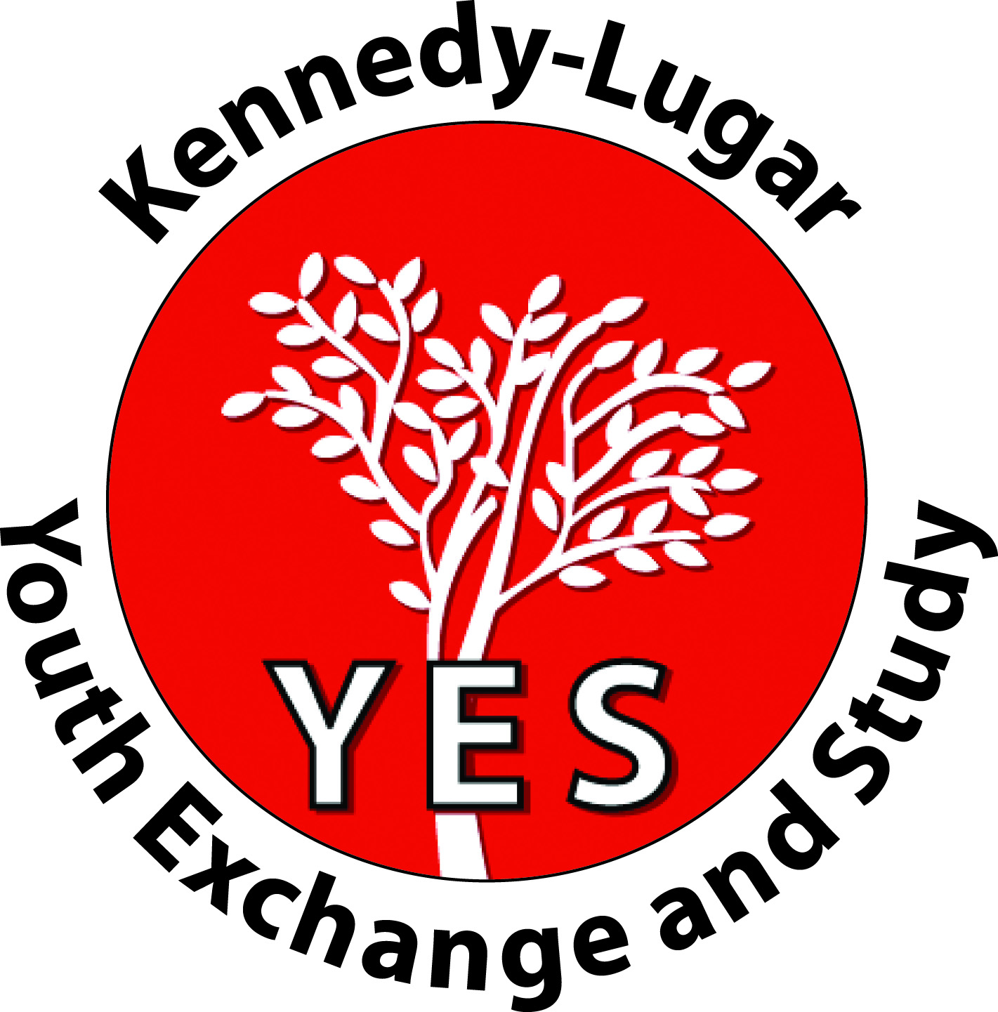 YES Logo- Title as YES Abroad